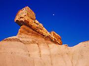 Pedestal log and gibbous moon, Blue Mesa, Petrified Forest National park, Arizona.