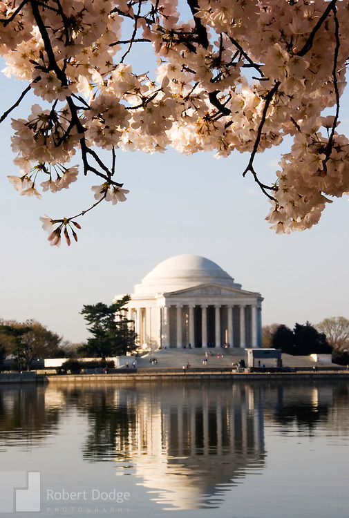 Washington DC is not only the nation's capital, but it is also a major tourist destination. This collection includes stock royalty free images of iconic Washington places, including the U.S. Capitol, the Library of Congress, the Federal Reserve, Treasury, Arlington Cemetery, Jefferson Memorial, Washington Monument, Vietnam War Memorial, Korean War Memorial, World War II Memorial and the annual Cherry Blossoms.
