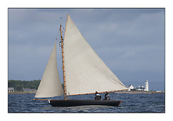 The final day of racing of the Fife Regatta on the King's Course North of Great Cumbrae<br /> <br /> Tringa, G&H Scharbaum, GER, Gaff Sloop, Wm Fife 3rd, 2010<br /> <br /> * The William Fife designed Yachts return to the birthplace of these historic yachts, the Scotland's pre-eminent yacht designer and builder for the 4th Fife Regatta on the Clyde 28th June–5th July 2013<br /> <br /> More information is available on the website: www.fiferegatta.com