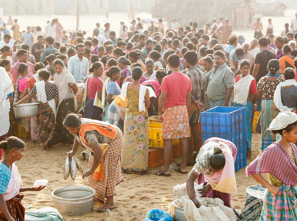 The local fish market, at the beach where the fish were caught, at Poovar Beach, near Trivandrum (Thiruvananthapuram), Kerala, India