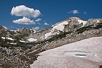 Snowbanks in the Snowy Range harbor thriving communties of microspic organisms in late summer.  The pinkish tinge is caused by algae which also contain the chemical anthocyanin.