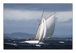 Day five of the Fife Regatta, Race from Portavadie on Loch Fyne to Largs. <br /> <br /> Viola, Yvon Rautureau, FRA, Gaff Cutter, Wm Fife 3rd, 1908<br /> <br /> * The William Fife designed Yachts return to the birthplace of these historic yachts, the Scotland's pre-eminent yacht designer and builder for the 4th Fife Regatta on the Clyde 28th June–5th July 2013<br /> <br /> More information is available on the website: www.fiferegatta.com