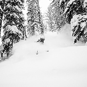 Tanner Flanagan skis trees laiden with 4 feet of new snow from a monster spring storm at JHMR.