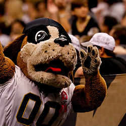 October 3, 2010; New Orleans, LA, USA; New Orleans Saints mascot Gumbo during a game between the New Orleans Saints and the Carolina Panthers at the Louisiana Superdome. Mandatory Credit: Derick E. Hingle