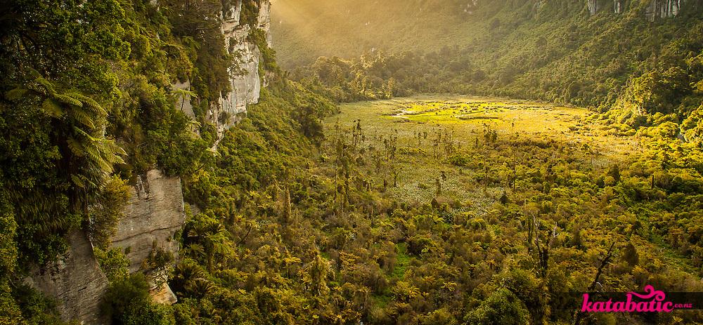 New Zealand's only polje, a karst associated wetland, in the Bullock Creek Valley new Punakaiki