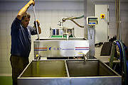 An employee at the Olive oil factory in Palaiochora (Crete) for producing (pressing) oil out of the harvested olives.  Palaiochora is a small town in Chania regional unit on the island of Crete, Greece. It is located 77 km south of Chania, on the southwest coast of Crete and occupies a small peninsula 400m wide and 700m long. The town is set along 11 km of coastline bordering the Libyan Sea. Its population was 1,675 in the 2011 census. Palaiochora's economy is based on tourism and agriculture (mainly tomatoes cultivated in glass houses and also olive oil).
