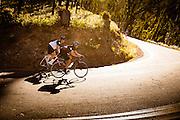 2013 Mount Hotham Bunch