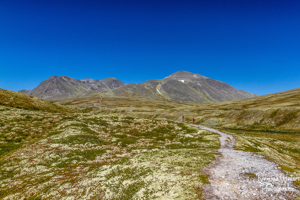 Rondane National Park, Norway - August