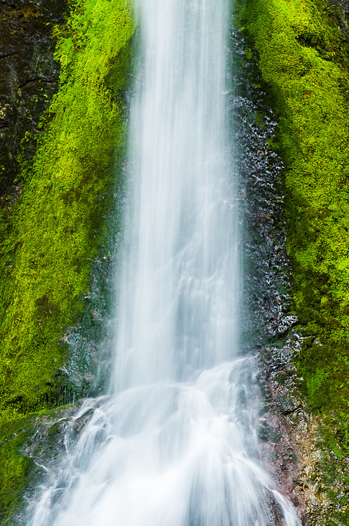 Marymere Falls, April, overcast light, Barnes Creek watershed, Olympic National Park, Clallam County, Washington, USA