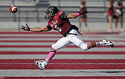 The Lindenwood Lynx football team hosted the Olivet Nazarene Tigers in an NAIA football game on Saturday afternoon. It was the homecoming game for the Lynx. Here, Lindenwood player Trey Parker (6) reaches as he tries to catch a long pass in the first half.
