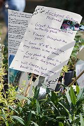 Plant sale at Fall Festival, Mitchell Lake Audubon Center, San Antonio, Texas, USA.