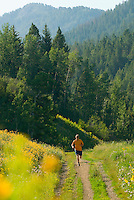 A young man runs along a trail in the Cache Creek area near Jackson, Wyoming.
