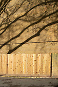 Light brown fence and brick wall of matching colour with the shadow of a tree falling over it in London, United Kingdom.
