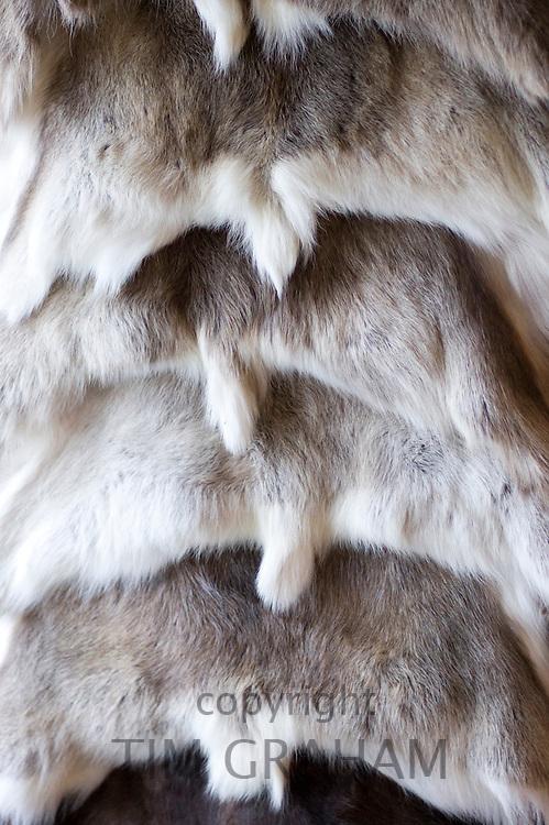 Reindeer pelts on display in Tromso Gift and Souvenir Shop in Strandgata in Tromso, Norway
