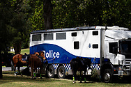 Police Horses rest before being transported away from The Shrine after another freedom protest failed to eventuate during COVID-19 in Melbourne, Australia. Premier Daniel Andrews comes down hard on Victorians breaching COVID 19 restrictions, threatening to close beaches if locals continue to flout the rules. This comes as Victoria sees single digit new cases. (Photo by Dave Hewison/Speed Media)
