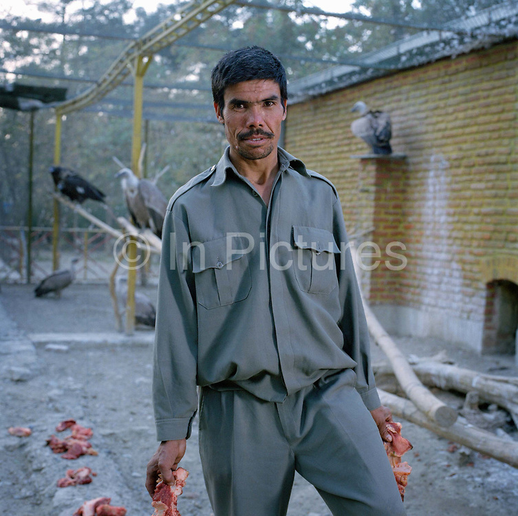 """Qurban Ali, zoo keeper, in the vulture cage feeding the birds meat for their evening meal. """"In the civil war the zoo was completely destroyed because it was on the front line."""" Says Ali. """"Most of the animals died"""", the vultures being one of the few exceptions, along with the lion which apparently survived by eating humans."""
