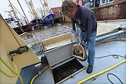 Nederland, the Netherlands, Zoutkamp, 11-8-2016In het Groningse dorp Zoutkamp is na de indamming van de Lauwerszee de garnalenvisserij nagenoeg verdwenen. Wel is er nog een reparatiewerf, de palingrokerij van palingvisser Gaele Postma, het visserijmuseum, de visafslag van de Rousant, waar garnalenkroketten gemaakt worden,  en een jachthaven waar in de zomer veel recreatieschepen liggen.Toch vinden nog steeds veel mensen uit dit dorp werk in die sector. Een deel van de economische teruggang is opgevangen door het toerisme en de pleziervaart . Foto: Flip Franssen