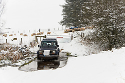 © Licensed to London News Pictures. 24/01/2021. Llanfihangel Nant Melan, Powys, Wales, UK. Farmers feed a flock of sheep in a winter landscape after overnight snow  near Llanfihangel nant Melan in Powys, Wales, UK. Photo credit: Graham M. Lawrence/LNP