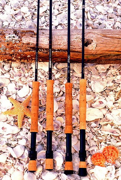 Stock photo of four flyfishing rods against a log on a bed of sheashells