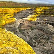 USA, Southwest, Utah, UT, Natural Bridges National Monument, Sipapu Natural bridge in Natural Bridges National Monument, UT.