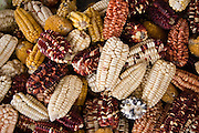 Over thirty varieties of corn lay on sale at a market stall in Cusco, Peru on September 24, 2005.