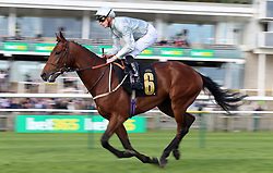 Mildenberger ridden by James Doyle before winning the bet365 Feilden Stakes during day one of The Bet365 Craven Meeting at Newmarket Racecourse, Newmarket. PRESS ASSOCIATION Photo. Picture date: Tuesday April 17, 2018. See PA story RACING Newmarket. Photo credit should read: Nigel French/PA Wire.