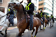 Mounted Police in the City of London during anti fascist demonstration in Whitechapel, Tower Hamlets, East London. As members of the EDL gathered the horses were sent in for crowd control.