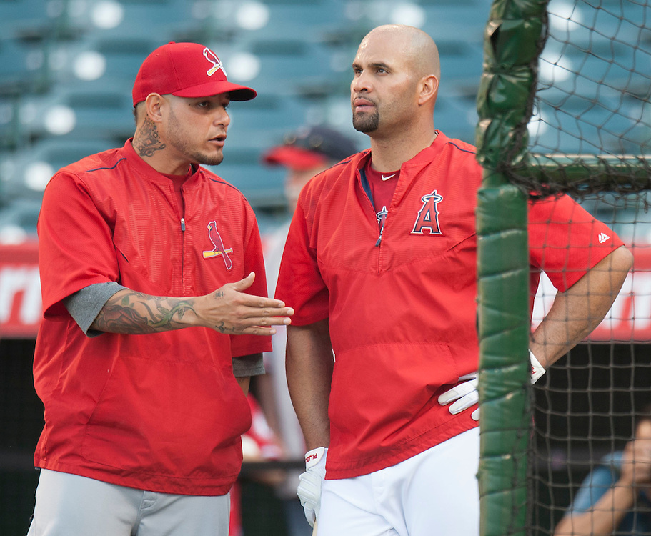 The Angels' Albert Pujols chats with the St. Louis Cardinals' Yadier Molina before their game Tuesday at Angel Stadium.<br /> <br /> ///ADDITIONAL INFO:   <br /> <br /> angels.0511.kjs  ---  Photo by KEVIN SULLIVAN / Orange County Register  --  5/10/16<br /> <br /> The Los Angeles Angels take on the St. Louis Cardinals at Angel Stadium Tuesday.<br /> <br />  5/10/16