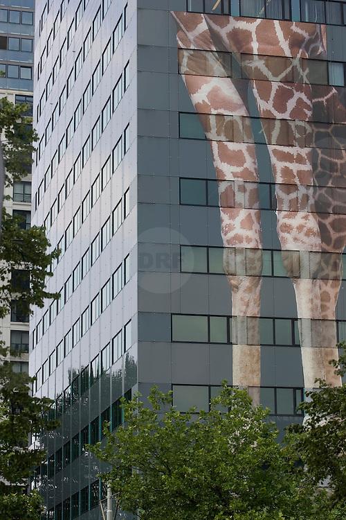 """Nederland Rotterdam 6 juni 2007 20070606.Reusachtige afbeelding van giraffe benen op het pand van de Rabobank Rotterdam Blaak ivm de geboorte van giraffe Tsavo in Diergaarde Blijdorp.  reclame uiting promotie activiteit van Rabobank met slogan """" Rabobank feliciteert Diegaarde Blijdorp! """" Komende dagen wordt de afbeelding voltooid...Rabobank Rotterdam is promoting partner van Diergaarde Blijdorp. Diergaarde Blijdorp bestaat dit jaar 150 jaar. Rabobank is promoting partner van Diergaarde Blijdorp..Sinds maart 2004 is Rabobank Rotterdam, als promoting partner tevens hoofdsponsor, verbonden met Diergaarde Blijdorp in Rotterdam. Dit partnership houdt in dat de Rabobank en de Diergaarde elkaar promotioneel ondersteunen en dat de Rabobank jaarlijks een financiële bijdrage levert waarmee nieuwe projecten en gezamenlijke activiteiten worden mogelijk gemaakt..De verbindende schakel tussen Blijdorp en de Rabobank ligt in maatschappelijke betrokkenheid en duurzaamheid. De Rabobank staat als grootste financiële dienstverlener in Nederland van oudsher midden in de samenleving. Zij wil betrokken zijn bij de gemeenschappen waarin zij gevestigd is. Diergaarde Blijdorp ontvangt als grootste publieksattractie van Zuid-West Nederland circa anderhalf miljoen bezoekers per jaar. Als Stichting Koninklijke Rotterdamse Diergaarde liggen haar doelstellingen op het gebied van natuurbehoud, recreatie, educatie en toegepast wetenschappelijk onderzoek. Daarmee vervult Blijdorp een belangrijke maatschappelijke functie..Doelstellingen.Sponsoring van Blijdorp is dus tevens een blijk van betrokkenheid bij de leefomgeving van de klanten van de Rabobank. Daarnaast sluit de Rabobank aan bij de groene doelstellingen en activiteiten van Blijdorp op het gebied van natuurbehoud. De Rabobank onderschrijft namelijk de opvatting  dat duurzame ontwikkeling van welvaart en welzijn een zorgvuldige omgang van natuur en milieu vergt, ofwel een gezonde balans tussen economische, sociale en ecologische activiteiten."""