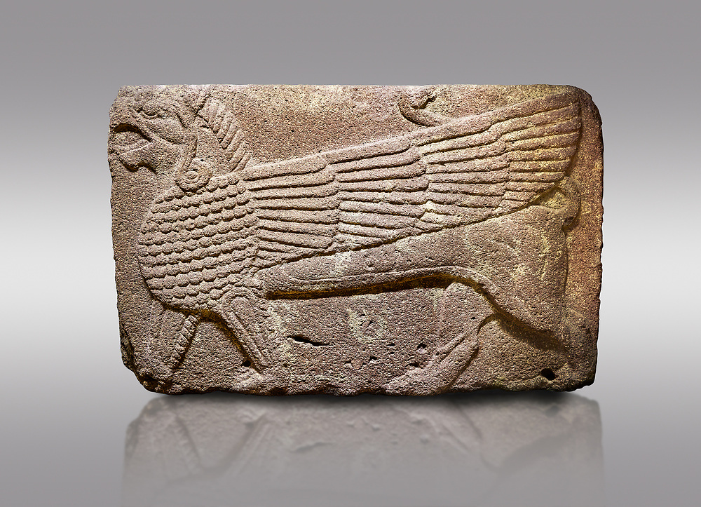Pictures & images of Phrygian relief sculpted orthostat stone panel Andesite, Atateirk Orman ciftligi, Ankara, 12OO-700 B.C. Anatolian Civilisations Museum, Ankara, Turkey.<br /> <br /> Winged griffin with a bird's head and a lion's body. There is a bird's head at the end of its tail. The chest was processed like fish scales. Its wing extends along the body. Muscles in its legs are schematic. <br /> <br /> Against a gray background. .<br /> <br /> If you prefer you can also buy from our ALAMY PHOTO LIBRARY  Collection visit : https://www.alamy.com/portfolio/paul-williams-funkystock/phrygian-antiquities.html  - Type into the LOWER SEARCH WITHIN GALLERY box to refine search by adding background colour, place, museum etc<br /> <br /> Visit our CLASSICAL WORLD PHOTO COLLECTIONS for more photos to download or buy as wall art prints https://funkystock.photoshelter.com/gallery-collection/Classical-Era-Historic-Sites-Archaeological-Sites-Pictures-Images/C0000g4bSGiDL9rw