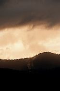 clouds form with evening alpenglow over an Olympic National Forest ridge on the Olympic Peninsula, Washington, USA