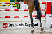 Brabants Dagblad<br /> The Dutch Masters - Indoor Brabant 2019<br /> © DigiShots