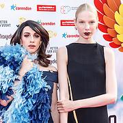 NLD/Amsterdam/20150629 - Uitreiking Rainbow Awards 2015, Valentijn de Hingh