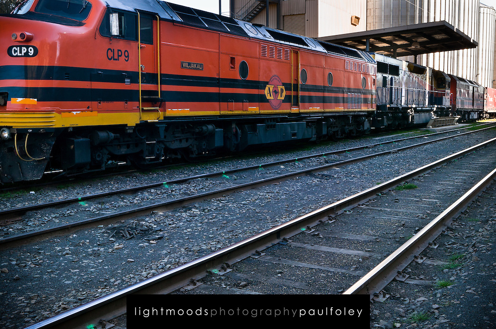 Loading Wheat onto Rail Transport, Western NSW, Auistralia