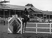"07/08/1980<br /> 08/07/1980<br /> 07 August 1980<br /> R.D.S. Horse Show: John Player Top Score Competition, Ballsbridge, Dublin. Harvey Smith on ""Sanyo Music Centre""."