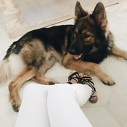 """Kristin Cavallari releases a photo on Instagram with the following caption: """"Bane, let's get some puppies so u can celebrate #FathersDay \ud83d\udc36 shoes by me \ud83d\ude1c@Nordstrom @chineselaundry"""". Photo Credit: Instagram *** No USA Distribution *** For Editorial Use Only *** Not to be Published in Books or Photo Books ***  Please note: Fees charged by the agency are for the agency's services only, and do not, nor are they intended to, convey to the user any ownership of Copyright or License in the material. The agency does not claim any ownership including but not limited to Copyright or License in the attached material. By publishing this material you expressly agree to indemnify and to hold the agency and its directors, shareholders and employees harmless from any loss, claims, damages, demands, expenses (including legal fees), or any causes of action or allegation against the agency arising out of or connected in any way with publication of the material."""