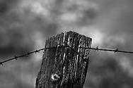Barbed wire stretches across an old fence post at the Black Diamond Mines Regional Park in Antioch, California on Monday, Feb. 4, 2008. (Photo by Kevin Bartram)