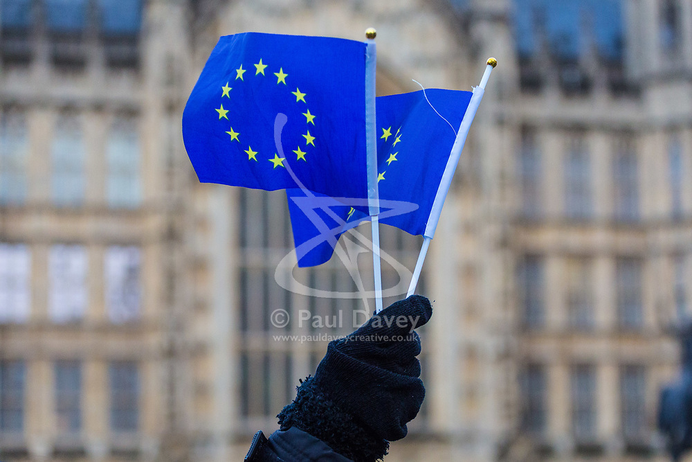 London, December 11 2017. As MPs prepare to debate a petition calling for a referendum on the final Brxit deal, Stop Brexit dozens of protesters demonstrate outside Parliament at Old Palace Yard. © Paul Davey