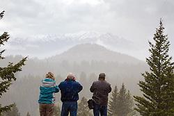 Photographers, Beartoot Pass, snowy mountains, snowstorm, photography tour