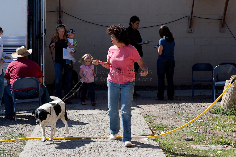 MCDERMITT, NV - AUG 17  Susan Wilkinson and Nipper leave the clinic with her daughter-in-law Tammy Wilkinson and grandchildren Reese, 2 and Rylee, 4 and their dogs Toby and Maddie after surgery during a clinic sponsored by the Humane Society of the United States August 17, 2009 in McDermitt Nevada.  (Photograph by David Paul Morris)
