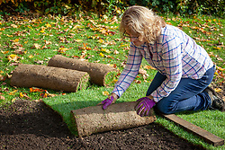 Laying rolls of turf - working off a board
