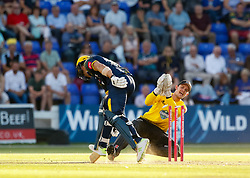 Gloucestershire's Gareth Roderick takes of the bails attempting to run out Glamorgan's Craig Meschede<br /> <br /> Photographer Simon King/Replay Images<br /> <br /> Vitality Blast T20 - Round 8 - Glamorgan v Gloucestershire - Friday 3rd August 2018 - Sophia Gardens - Cardiff<br /> <br /> World Copyright © Replay Images . All rights reserved. info@replayimages.co.uk - http://replayimages.co.uk