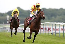 Harry Angel ridden by Alan Kirby wins the Armstrong Aggregates Sandy Lane Stakes, at Haydock Park Racecourse.