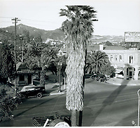 1924 Hollywood Blvd.