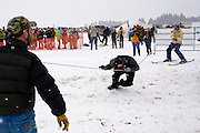 Volunteer Jason Sanford takes a spill as a skier leaves the opening gates at the at the World Skijoring Championships in Whitefish, Montana on Saturday, January 28. <br /> (REUTERS/Matt Mills McKnight (UNITED STATES)