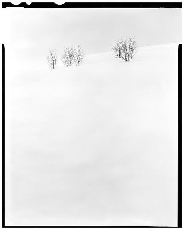 Boston, MA 02/11/2015<br /> Millennium Park after a blizzard<br /> Alex Jones / www.alexjonesphoto.com