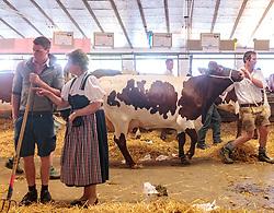 29.04.2018, Maishofen, AUT, XII Weltkongress Pinzgauer Rind, im Bild Züchter mit seinem Rind // Farmer with his cattle during the XII Pinzgauer cattle World Congress in Maishofen, Austria on 2018/04/29. EXPA Pictures © 2018, PhotoCredit: EXPA/ JFK