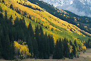 Maroon Bells/Snowmass Wilderness, Colorado.  Steep mountainsides, under a pallette of aspen colors, tilted downwards to the valley floor.  It is the kind of country that has your eyes wandering to bald spots, wondering what the view must be like from them.  It's not often I walk level ground...it seems like I'm always on a diagonal path, hoping for switchbacks to ease the way.  Maybe our paths will cross, going up or coming down.