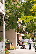 Typical street scene in one of Boise's urban, tree-lined streets