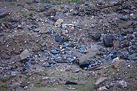 Rocks and boulders in Pasterze Glacial Valley, Grosglockner Mountain. Typical habitat of Ptarmigan (Lagopus lagopus). Hohe Tauern National Park, Carinthia, Austria